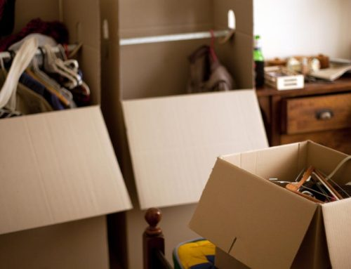 Moving in Sonoma County? Get organized first!